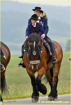 Pferdemarkt Bayern Termine